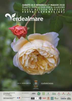 Tante le rose in mostra
